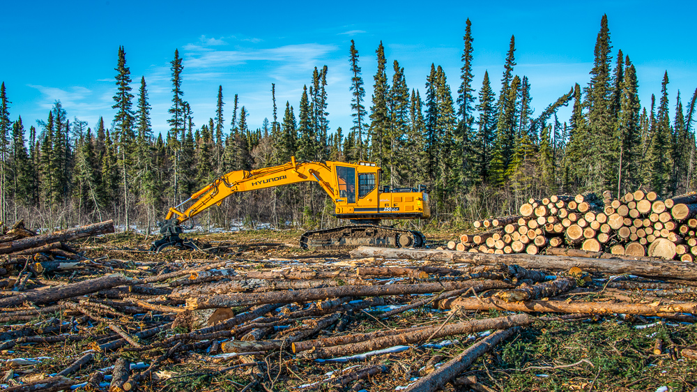 Logging machines in Duck Mountain Provincial Park