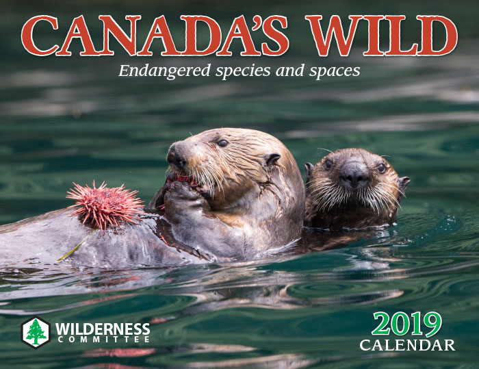 2019 Canadas Willd calendar cover