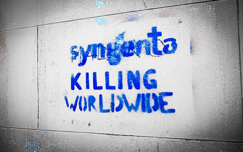 syngenta graffiti