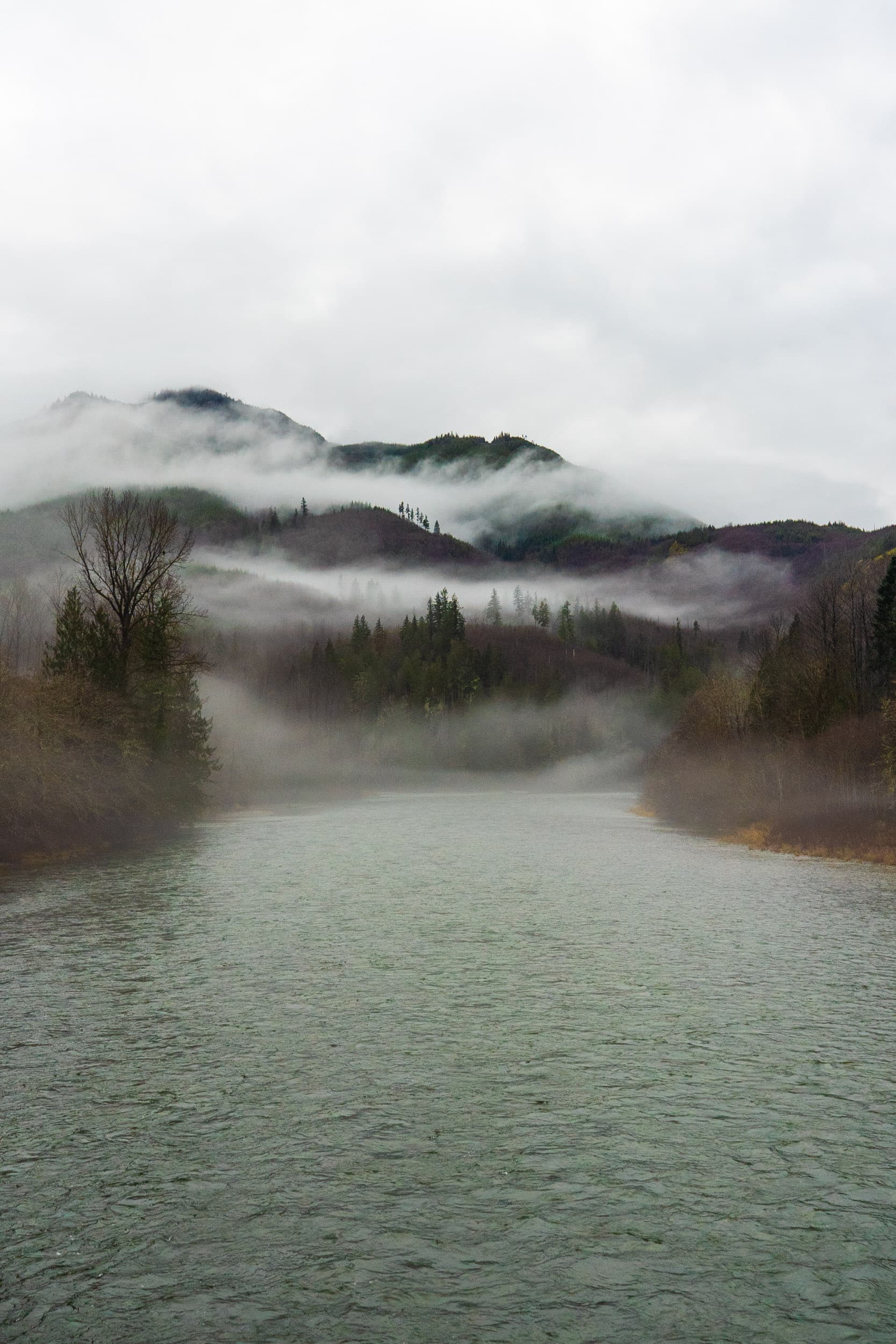 The Skagit River. Photo: Fernando Lessa / The Narwhal