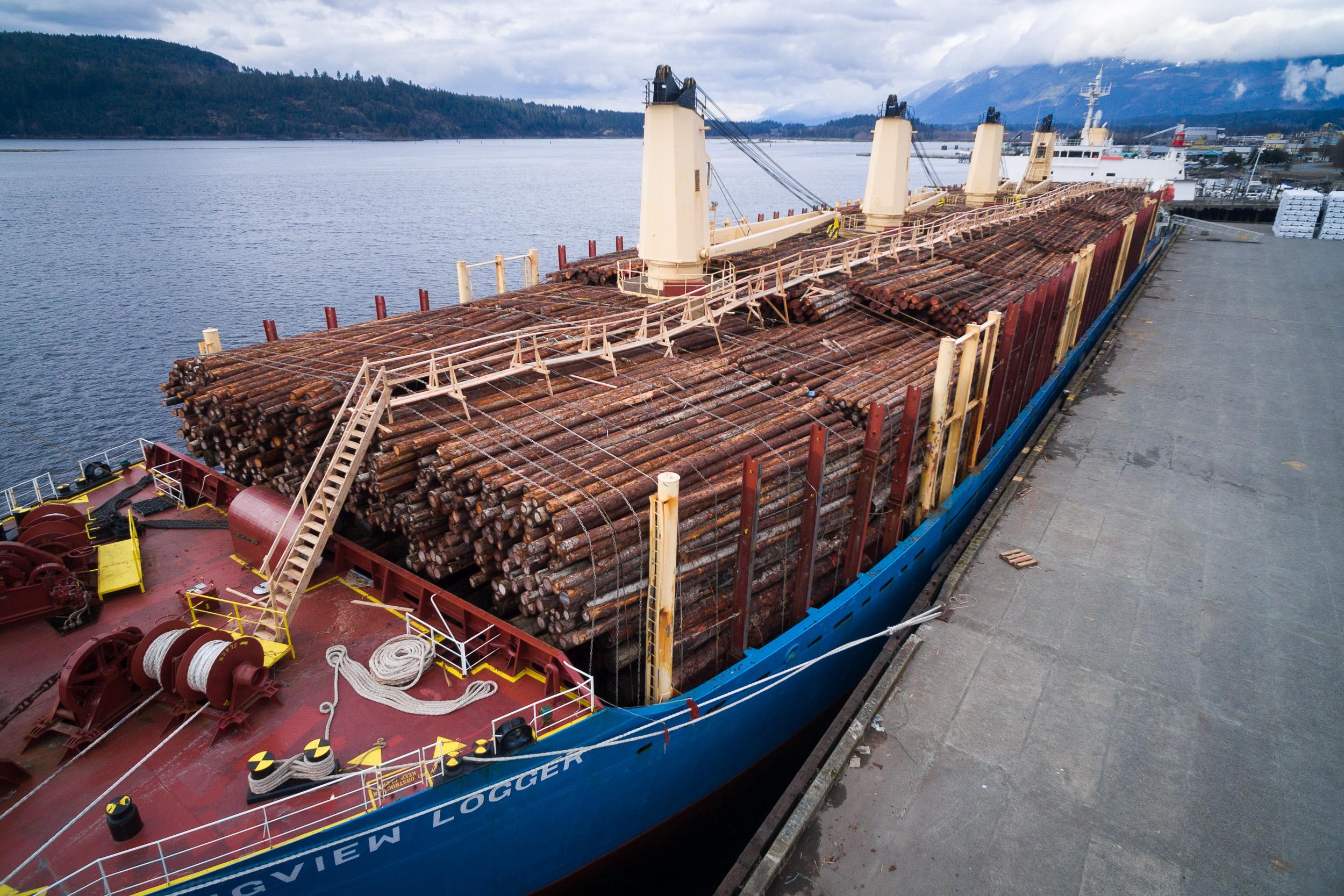 Photo: Raw log export ship in Port Alberni (TJ Watt, Ancient Forest Alliance).