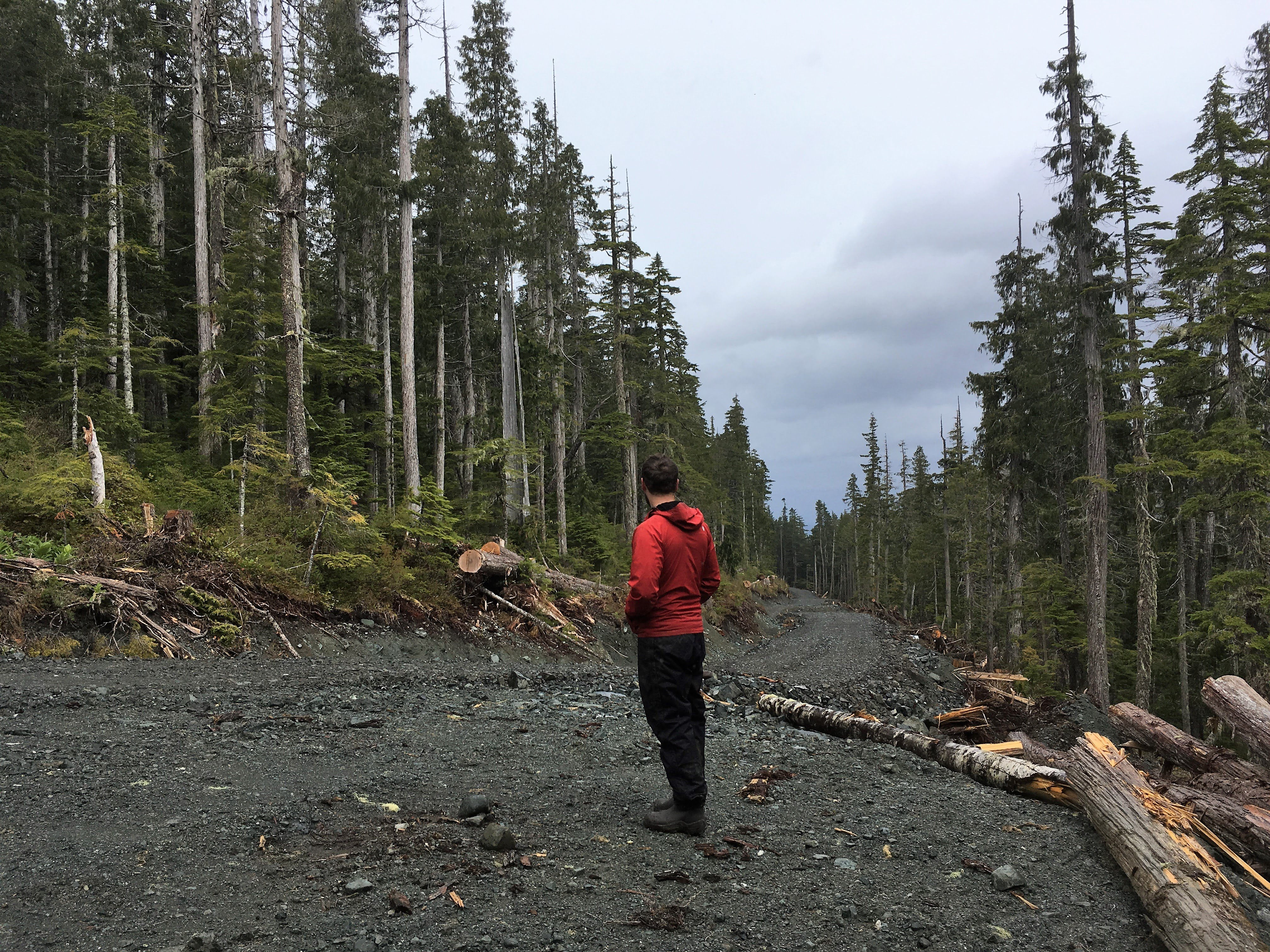 Wilderness Committee Vancouver Island Campaigner Torrance Coste on new BCTS logging road in Shmidt Creek.