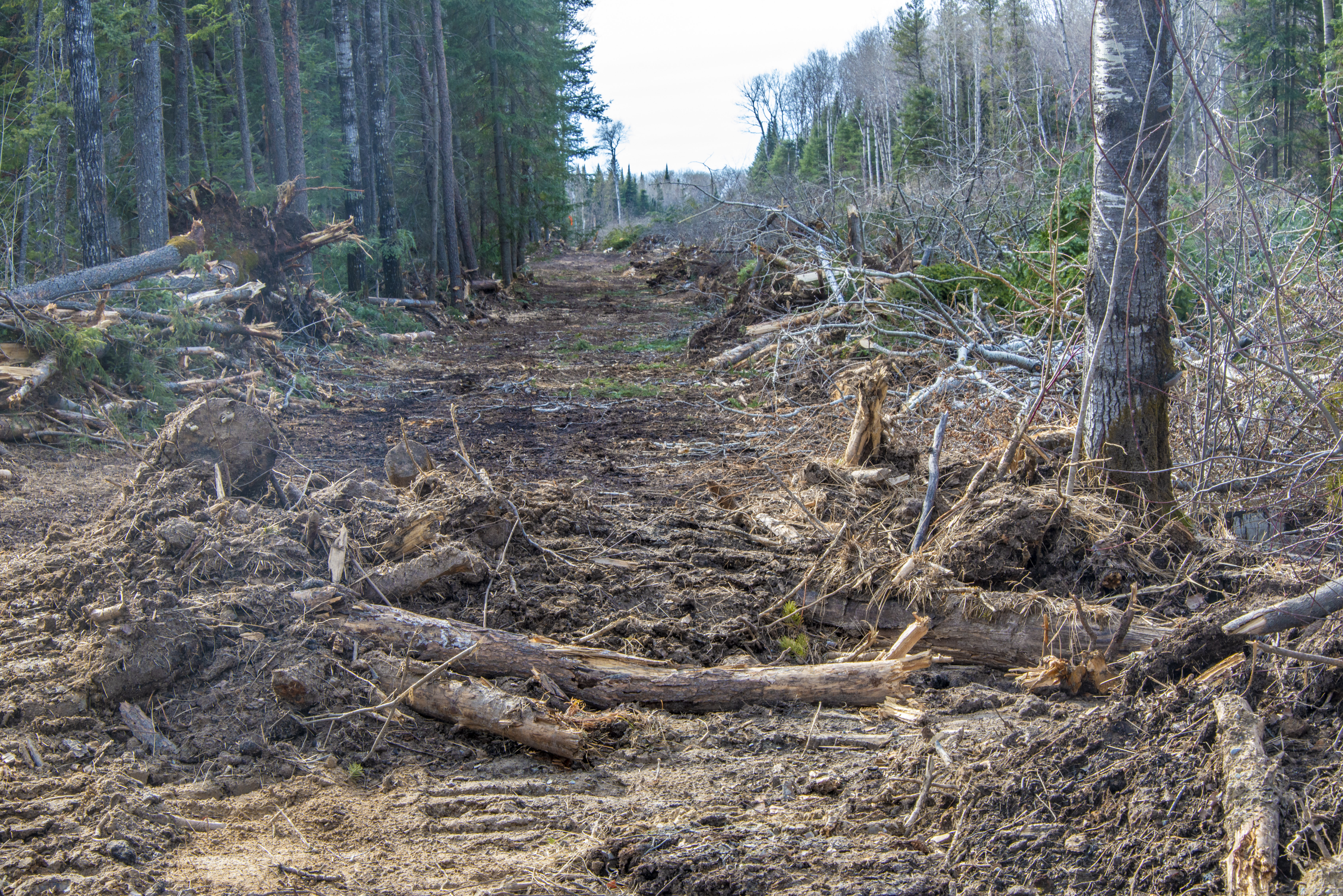 Bulldozing done on Hollow Water First Nation land for the frac sand mine