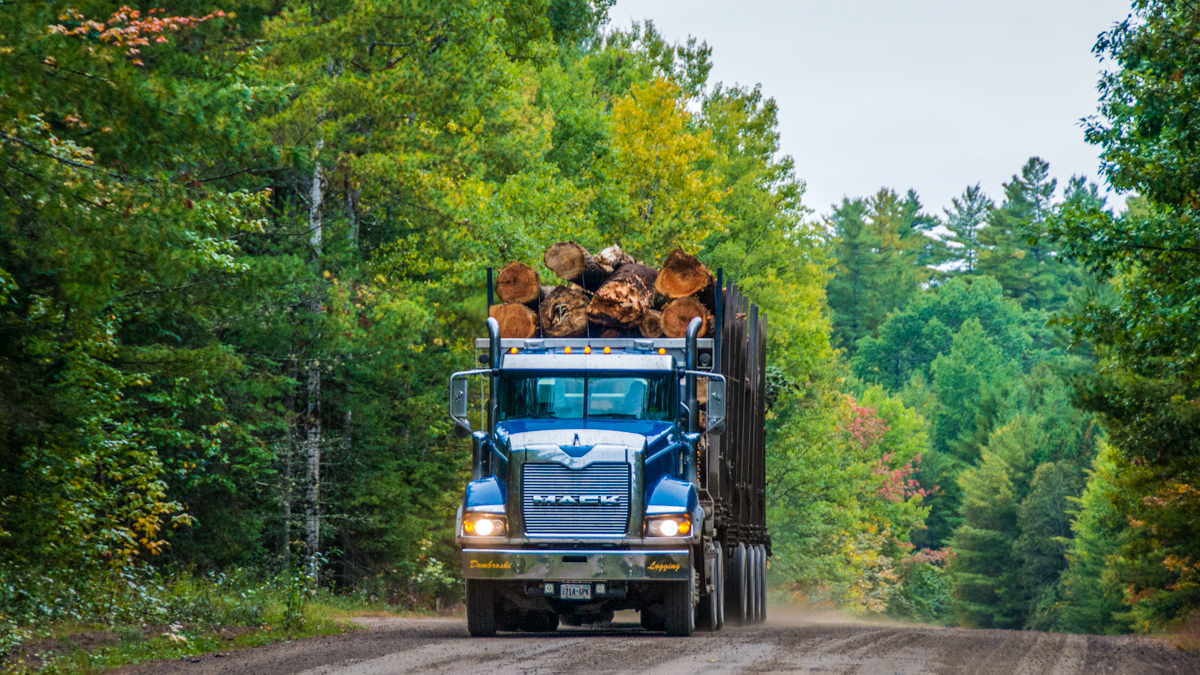 Logging truck in Algonquin