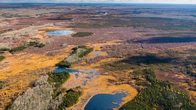 Proposed Teck Frontier mine site and area to be impacted (Photo: Garth Lenz).