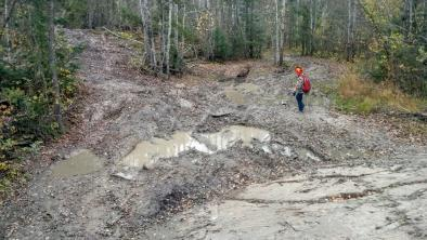 Wrecked trails in Nopiming Provincial Park