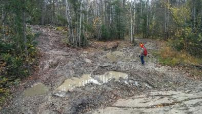 Wrecked trails from all-terrain vehicles in Nopiming Provincial Park