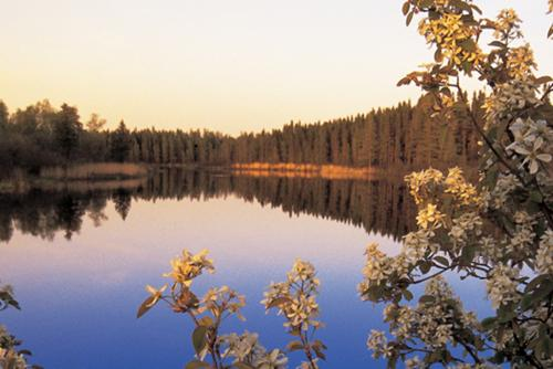 Manitoba | Wilderness Committee