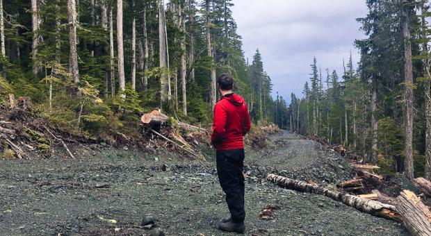 Meet With Your MLA For Old Growth