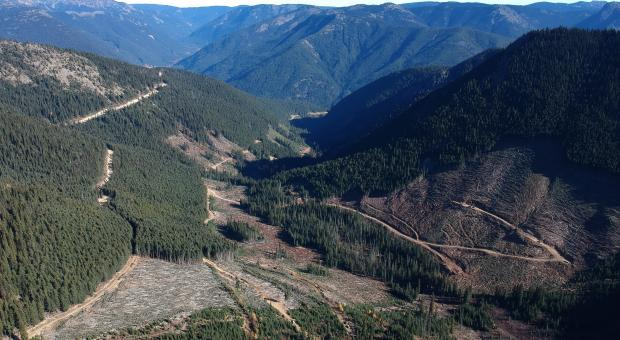 Upper Smitheram Valley where Imperial Metals wants to drill for gold in the Donut Hole.