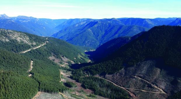 Plans for renewed logging and mining near E.C. Manning and Skagit Valley provincial parks are raising fears of environmental damage on both sides of the Canada-U.S. border