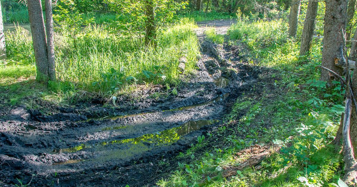 ATV trail proposal an assault on Manitoba parks